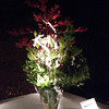 "Flower Arrangement.<br /> Since the Hanatouro means ""Flower Light Path"" there were a number of lit up flower arrangements along the paths."