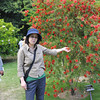 Ritsuko with a Bottle Brush.<br /> These plants are very common back in Perth, their an Australia Native Bush. We found this specimen at the Kyoto Botanical Gardens.