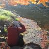 Capturing the Autumn Colours.