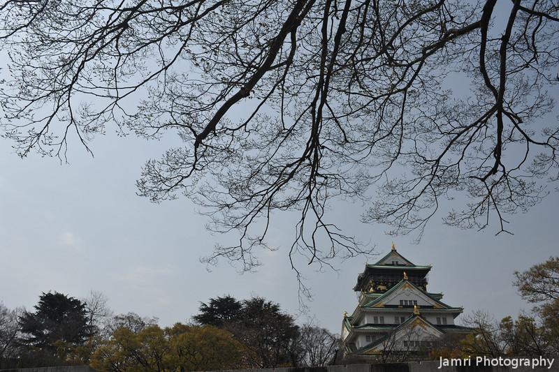 Branches spreading towards Osaka-jo.