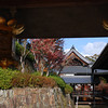 Temple Buildings.<br /> At Komyo-ji (a Buddhist Temple) in Nagaokakyo.
