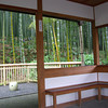 Tranquillity.<br /> Bamboo forests have become my favourite places to chill out in Japan. This one even has a nice little shelter to view bamboos from.