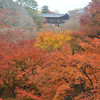 Big Red.<br /> Maples at Tofuku-ji.