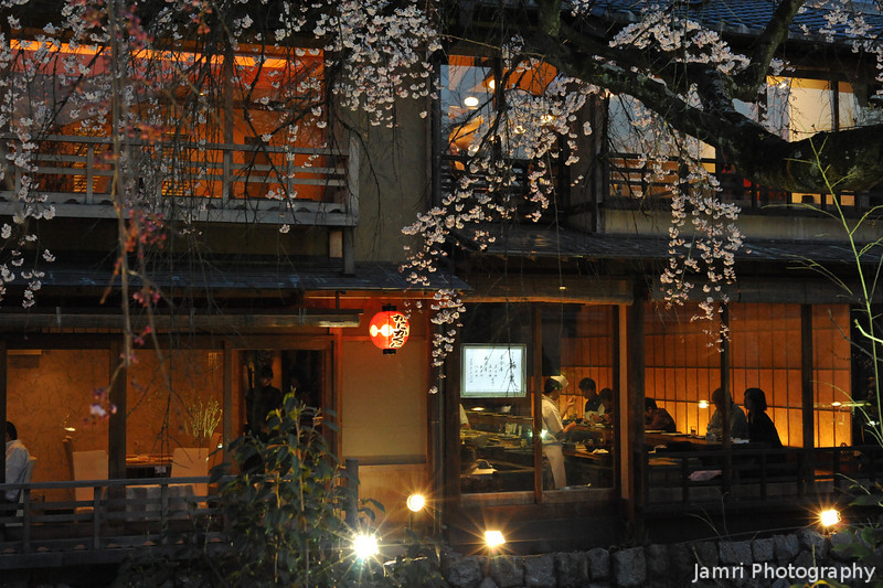 Restaurants Through the Sakuras.<br /> In Shirakawa, Gion, Kyoto.