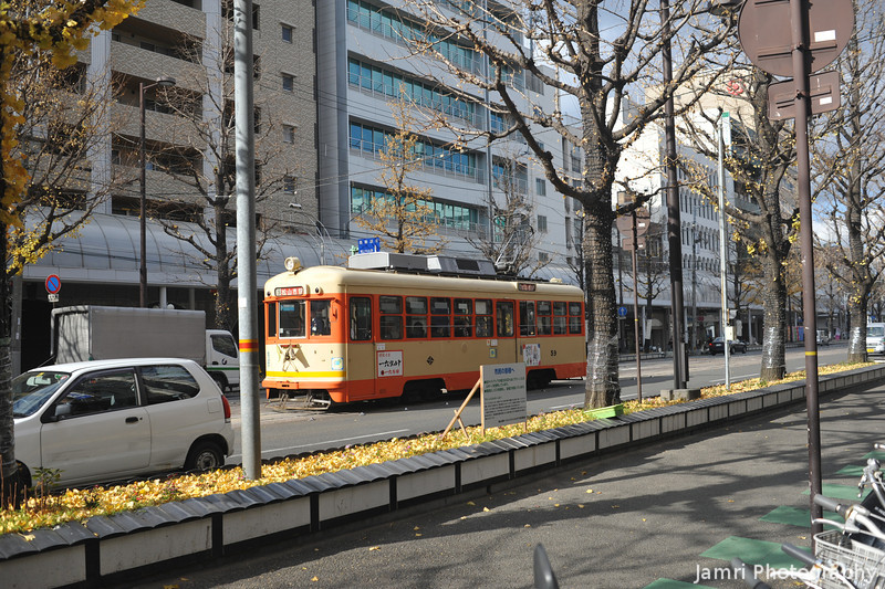 Inner City Transportation.<br /> Little trams, but no subways here!