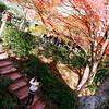 The Capture on the Steps.<br /> At Jojakko-ji (Jojakko Temple), Arashiyama, Kyoto.<br /> Note: Film Shot, Nikon F80 + 24f/2.8mm + Fujicolor Reala ACE 100.