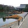 Along the Pond.<br /> At Tenryu-ji (a Zen Buddhist Temple) in Arashiyama, Kyoto.