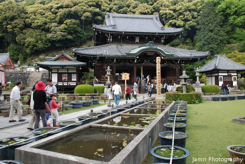At Mimuroto-ji (a Buddhist temple) in Uji, Kyoto-fu.