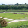Towards the productive part of the garden.<br /> The large garden at Korakuen in Okayama wasn't just a vast ornamental display of wealth, there also were rice fields incorporated in to the garden. Here is one example of such.