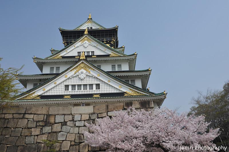 Osaka Castle and Sakura.