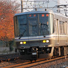 Passing the orange foliage.<br /> A commuter train passes some orange foliage in Nagaokakyo on it's way towards Osaka.