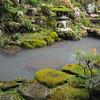 Towards a moss covered lantern.<br /> At Youkoku-ji (a Buddhist Temple) in Nagaokakyo.