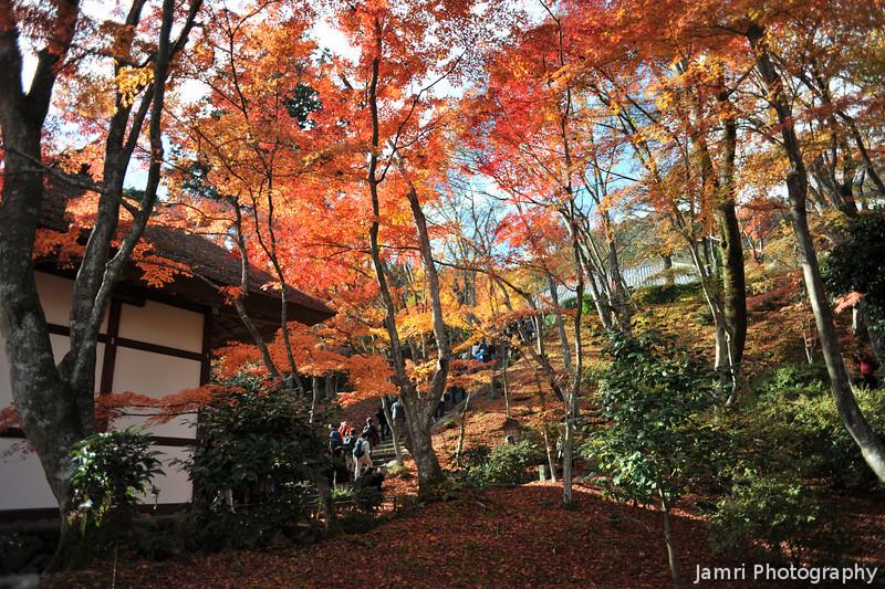 Back by the Gate.<br /> At Jojakko-ji (Jojakko Temple) in Arashiyama, Kyoto.