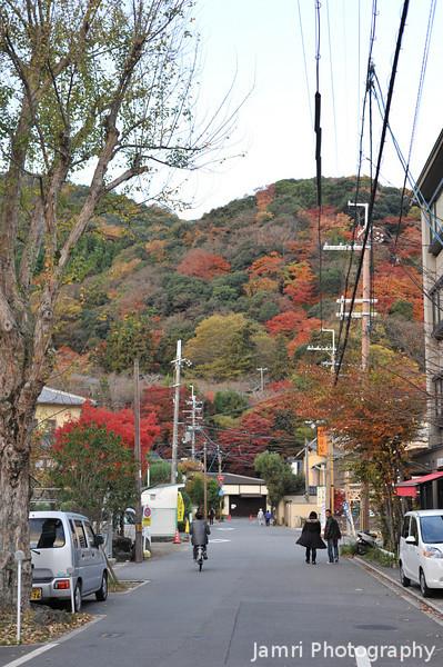 Autumnal Arashiyama Early in the Morning.