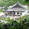 A view of the Temple Complex.<br /> At Youkoku-ji in Nagaokakyo.
