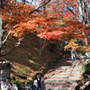 Enjoying the Autumn Scenery.<br /> At Jojakko-ji (Jojakko Temple) Arashiyama, Kyoto.
