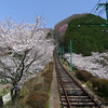 The view up the cable railway.<br /> On Mt. Myoken, Osaka.