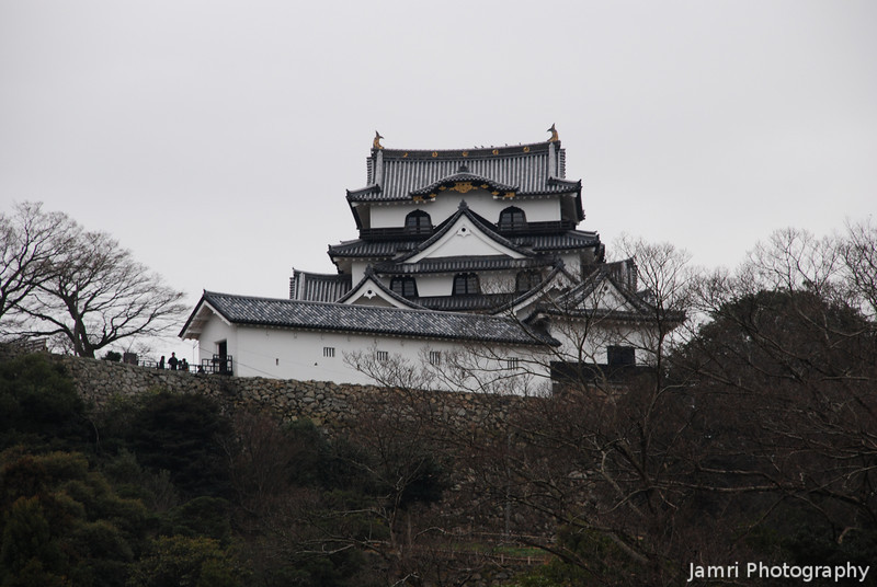 Hikone-jo from the Garden.<br /> Hikone Castle as seen from the Traditional Japanes Garden next door.