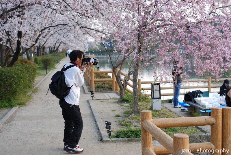 Photographer behaving badly, part one.<br /> It's always the cherry blossom time when they emerge from the woodwork. These 50-60 something year olds with Big Cameras, Big Lenses and Big Flashes who go around harassing young ladies. Plus they make fun of my little 35mm f/2 lens on my camera, some people have no manners, well here's my photographic evidence on of the harassment.