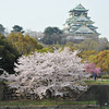 River, Sakuras, and the Castle.<br /> Osaka Castle.