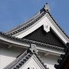 Detail of Shoryuji Castle Roof.