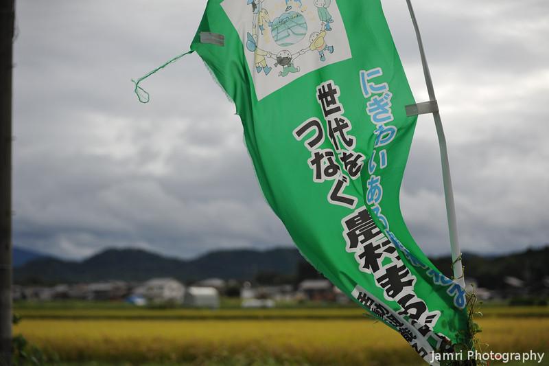 Green Flag.