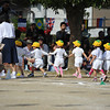 Hand in hand we make our way to the starting line.<br /> The Yume-gumi (Dream Group) who are the youngest class (turning 3 in the school year) at Megumi kindergarten.