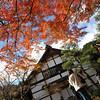 Outside a small building.<br /> At Jojakko-ji (Jojakko Temple) in Arashiyama, Kyoto.