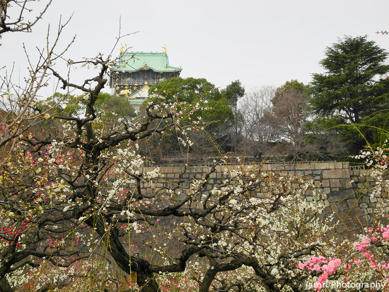 Ume and the Castle.