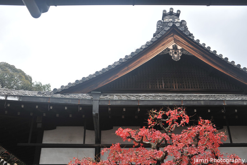 Maple and Temple Roof.