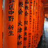 The Names of the Sponsors.<br /> On the backside of each of the Torii the names of the people or organisation who sponsored the shrine are written.