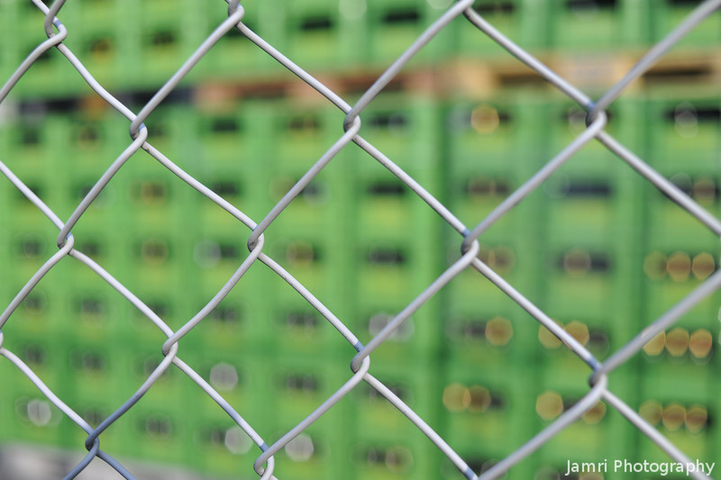 Focusing on the fence.