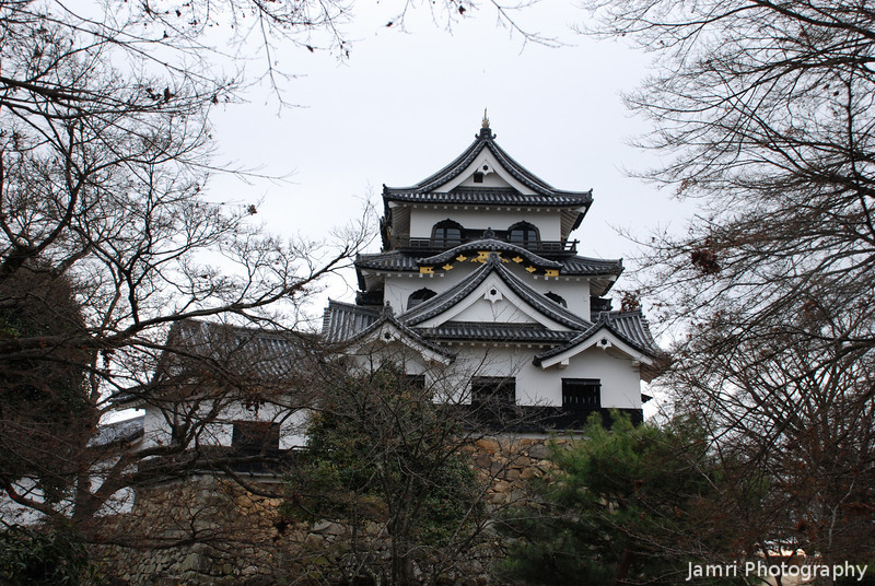 Hikone Castle framed by Trees.
