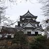 Hikone Castle framed by Trees.