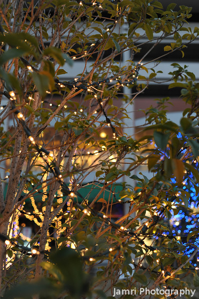 Through the lit up trees.<br /> More of the Festive Season Decorations at Bambio, Nagaokakyo.