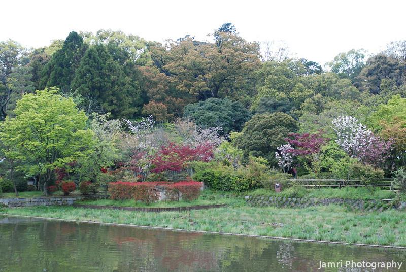 Garden and Pond.<br /> At Nagaoka Tenmangu Shrine, in Nagaokakyo.