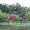 Garden and Pond.<br /> At Nagaoka Tenmangu Shrine, in Nagaokakyo.