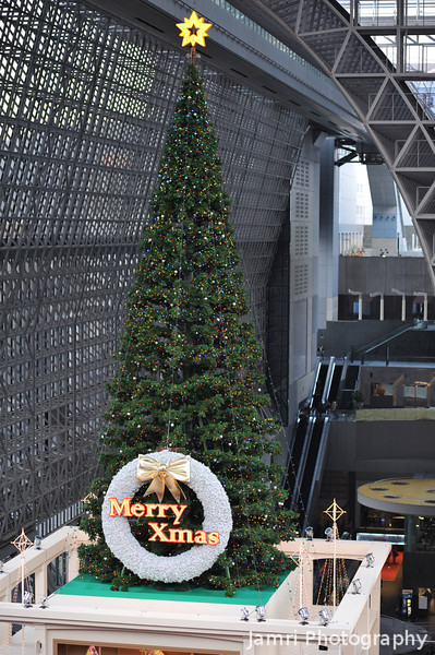 The Big Tree Again.<br /> This time shot with my D700. At Kyoto Station.