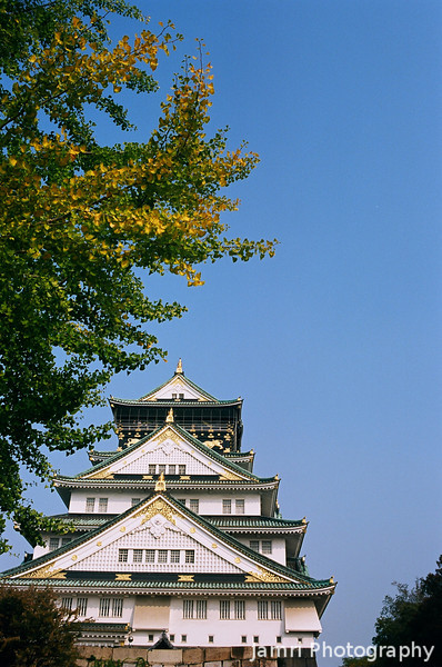 Osaka Castle and Ginkgo.<br /> Note Film Shot: Nikon F80 + 35f/2 Lens + Kodak Ektar 100