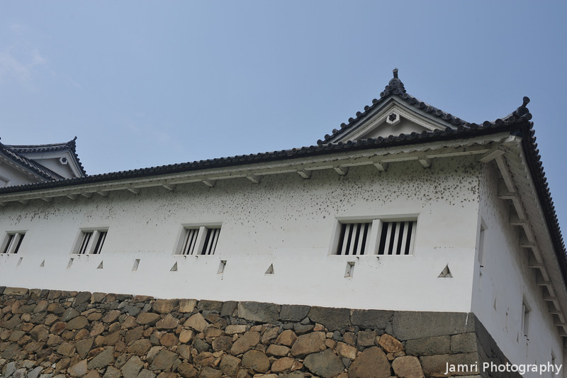 A Corner of the Walls of Hikone-jo.<br /> Are those bullet holes or just dirt?