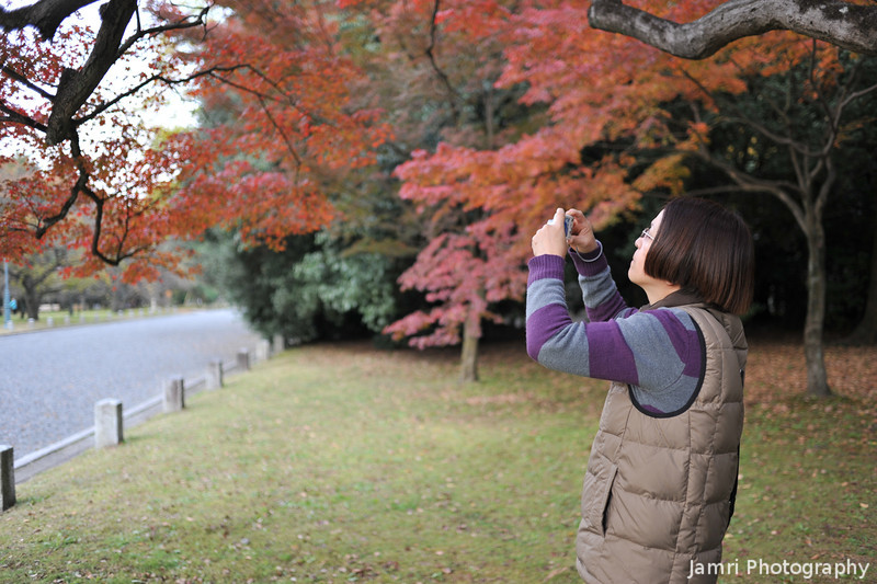 Ritsuko capturing the maple colour.