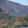 Towards the mountains of Arashiyama