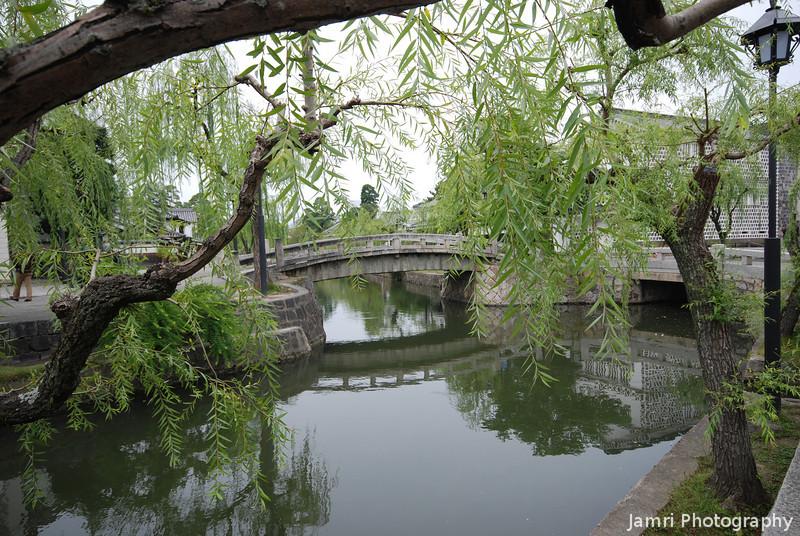 Through the Willow Trees.