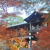 The Bridge framed by Maples.<br /> At Tofuku-ji, Higashiyama, Kyoto.