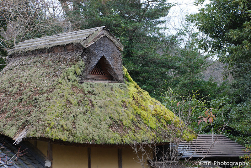 Moss Covered Roof.<br /> Of a traditional building in the garden next-door to Hikone Castle.