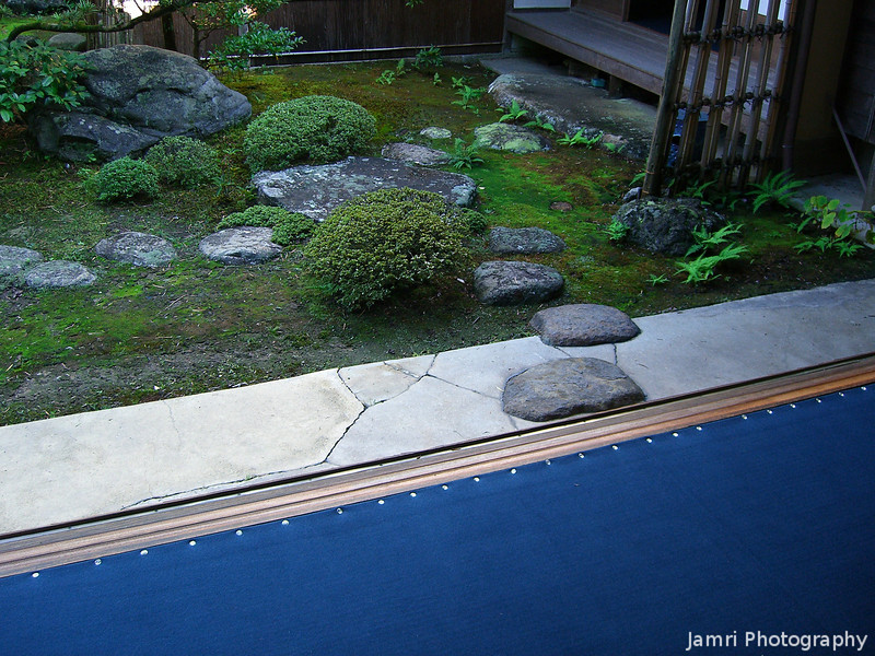 Blue Carpet and Garden.