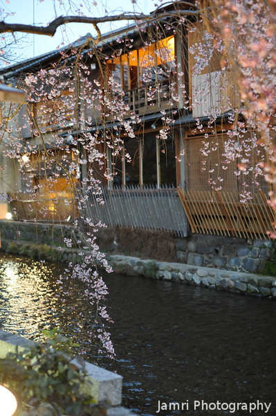 Sakura and Traditional Restaurants.<br /> Along the Shirakawa.