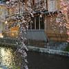 Sakura and Traditional Restaurants.<br /> Along the Shirakawa.