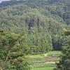 The valley and hills.<br /> From Aburamu no sato (Abram's place) near Hida Furukawa, Gifu Prefecture, Japan.