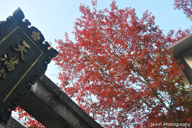 From beneath the 2nd torii.<br /> At Nagaoka Tenmangu Shrine.